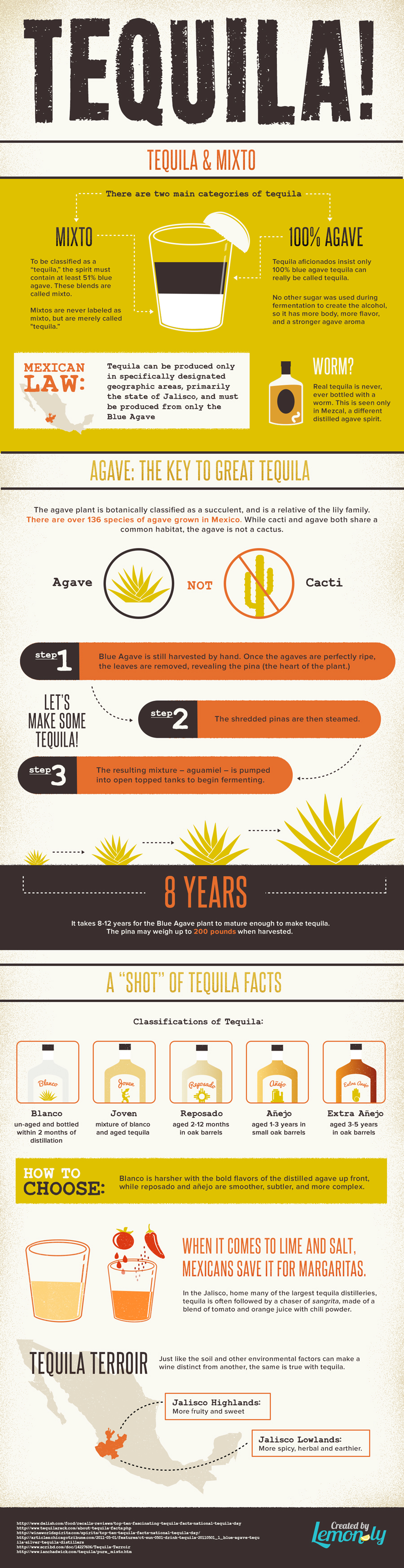 All About Tequila Infographic: Lemonly